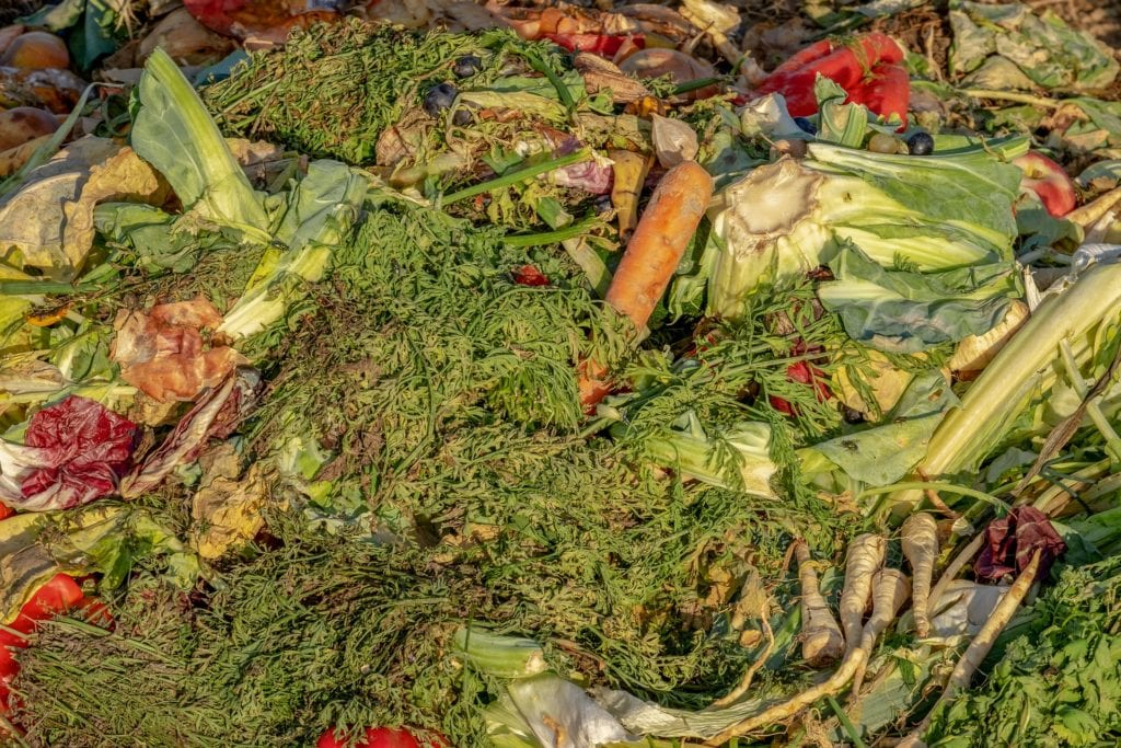 Tips You Can Use To Stop Your Kitchen Compost Bin From Smelling