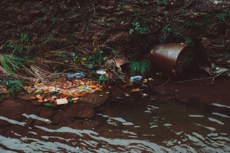 environmental issues water pollution